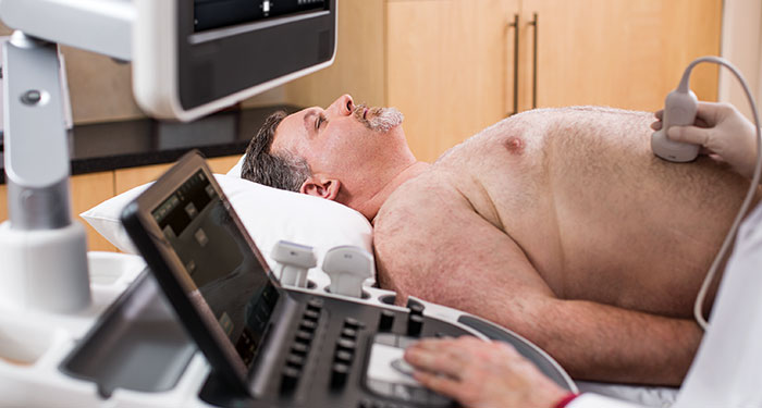 ultrasound-liver-imaging-cat-700x375-thumbnail
